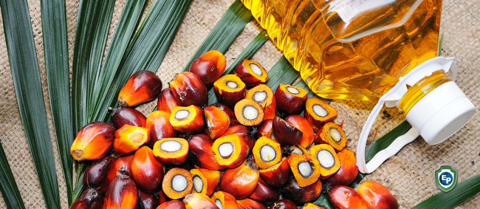 Removal of palm oil from the list of biofuels accepted in the EU: The response of Asian countries.
