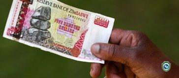 Zimbabwe Changes It's Foreign Exchange Market and Rules