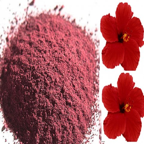 Hibiscus Extract Powder